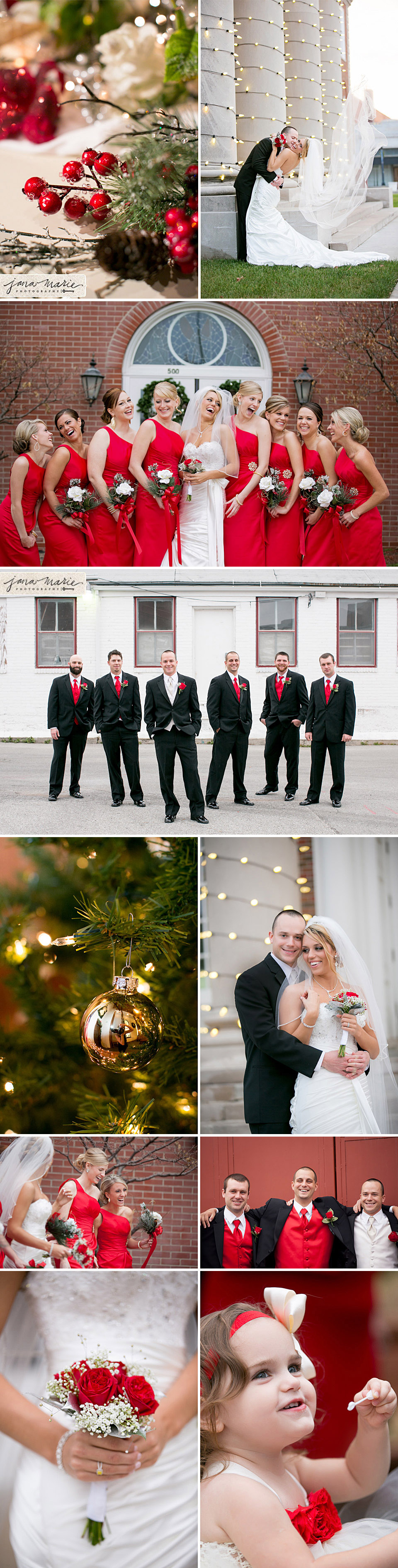 Bridal party, bride and groom, Ornaments, Christmas trees, winter receptions, Jana Marie photos