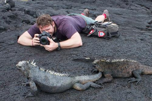 Mẹo chụp ảnh động vật hoang dã ấn tượng - 3
