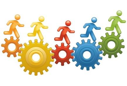 Câu chuyện về con kiến và hệ thống quản lý công ty