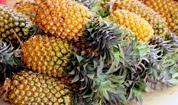 http://www.casadelasolas.com/wp-content/uploads/2012/09/pineapples.jpg