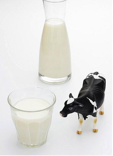5 thực phẩm giúp phòng chống ô nhiễm trong cuộc sống hiện đại | 5 thực phẩm giúp phòng chống ô nhiễm,sữa bò,rong biển,tiết,tiểu mạch