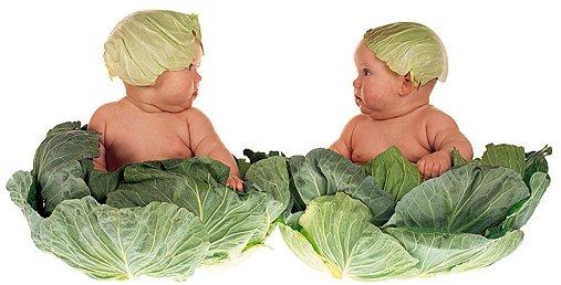 7 sai lầm tai hại khi cho con ăn rau