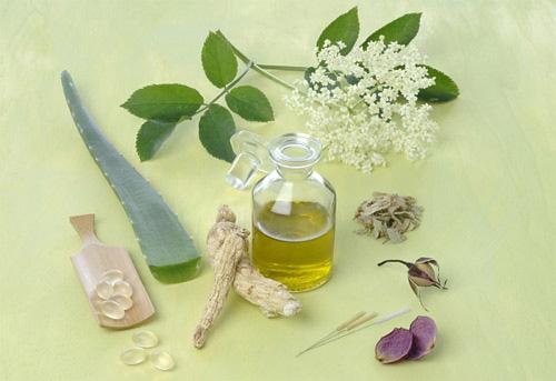 Các loại tinh dầu có tác dụng giải độc cho cơ thể 1