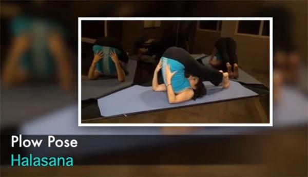 6 tư thế yoga giúp chị em trẻ lâu, tránh lão hóa 4