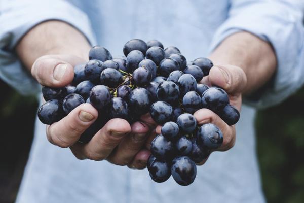 10 loại quả ăn vào giúp da đẹp miễn chê