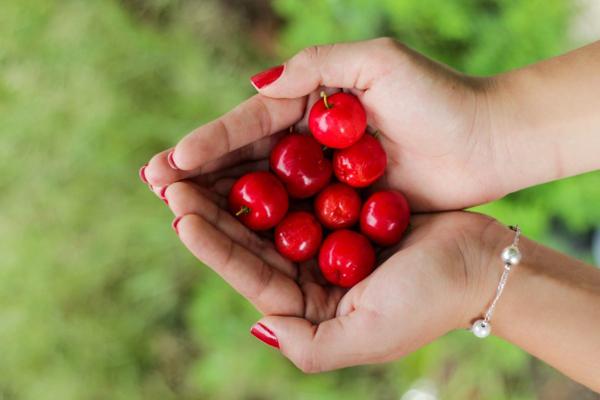 10 loại quả ăn vào giúp da đẹp miễn chê 10
