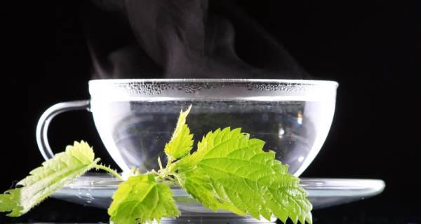 loại nước giúp giảm mỡ thừa 5