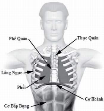 Khó thở, coi chừng rối loạn chức năng cơ hoành